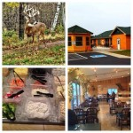 Black Creek Lodge